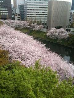 sanwa_7.JPG